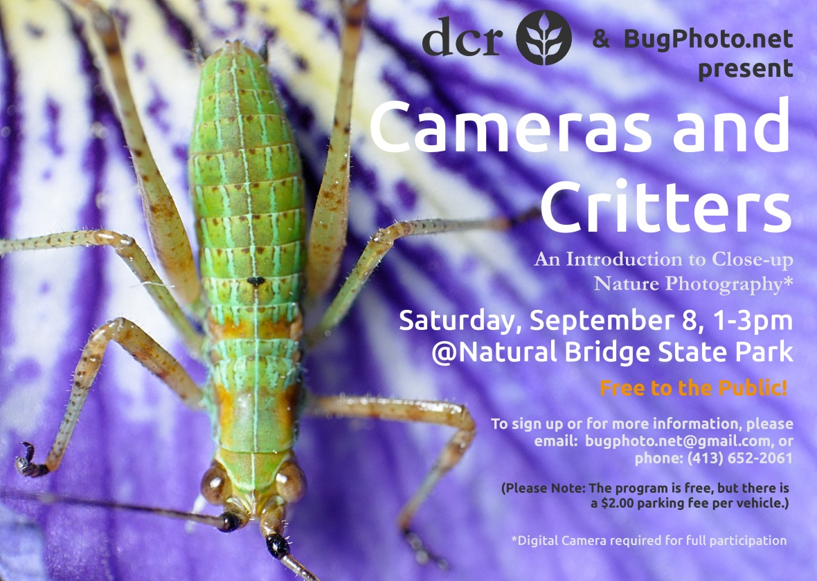 Cameras and Critter Macro Photography Program Flyer