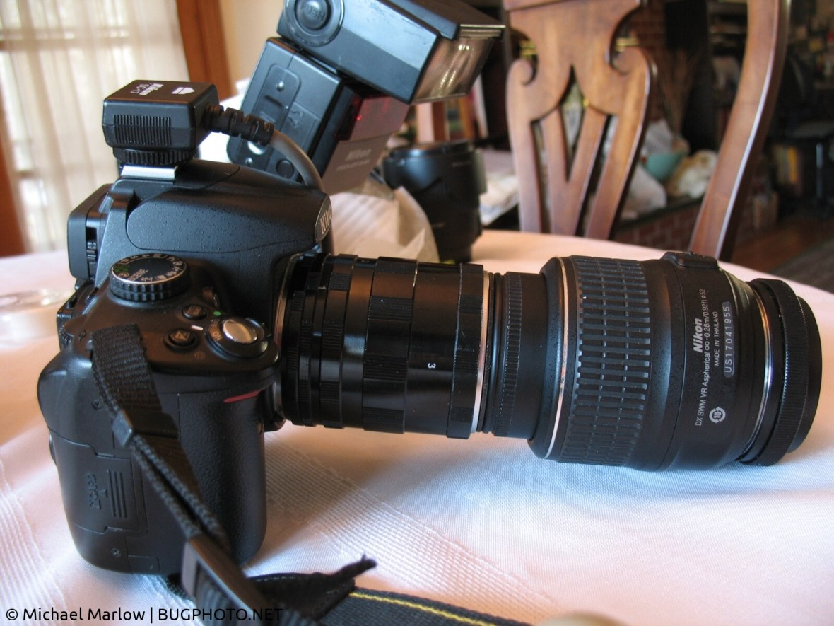 extreme macro camera rig with extension tubes and reversed Nikon kit lens
