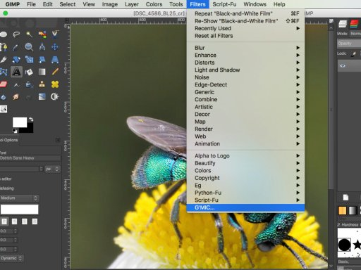 G'MIC Filter Suite in GIMP Mac